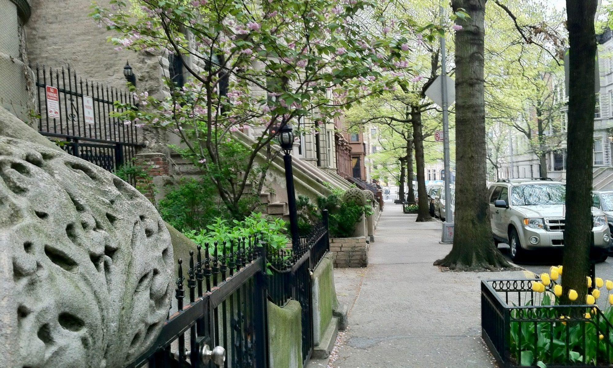 The West 147th Street Block Association